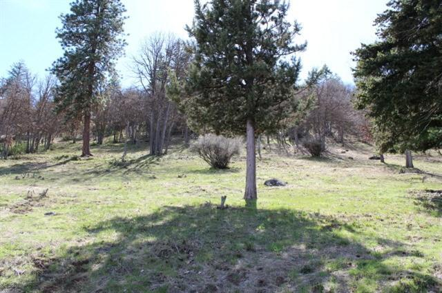 0-Lot 863 Coopers Hawk, Klamath Falls, OR 97601 (#2985195) :: Rocket Home Finder