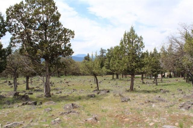 0-LOT 534 Dowitcher, Klamath Falls, OR 97601 (#2985196) :: Rocket Home Finder