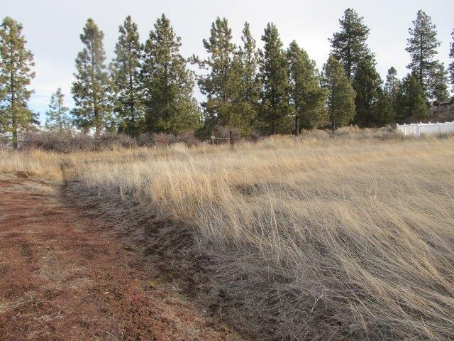 0 Golden Meadow, Chiloquin, OR 97624 (#2985425) :: FORD REAL ESTATE