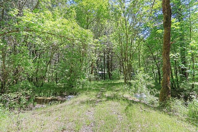 322 Round Prairie, Wilderville, OR 97543 (#2986574) :: Rocket Home Finder