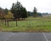 95 Ingalls Lane, Wilderville, OR 97543 (#2987949) :: FORD REAL ESTATE