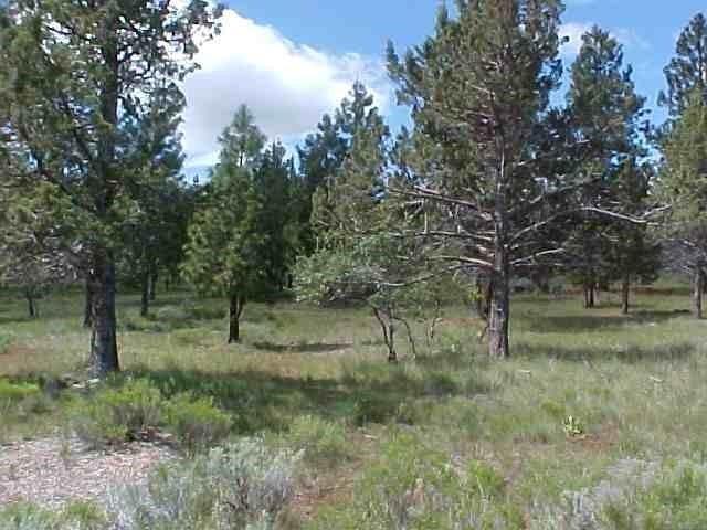 0 Cedar Trails, Lot 1, Klamath Falls, OR 97601 (#2988028) :: Rocket Home Finder