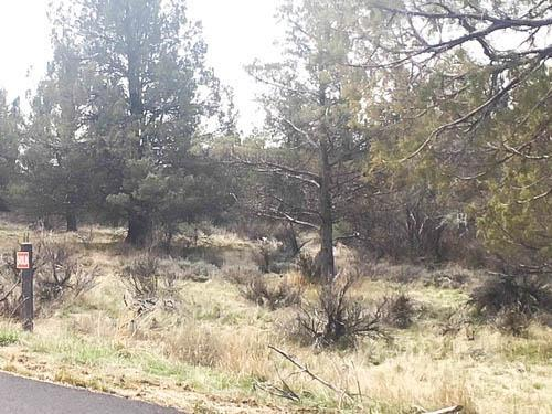 0 Lot 54 Beattys Butte, Klamath Falls, OR 97601 (#2988152) :: Rocket Home Finder