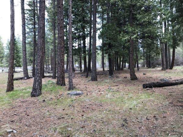 0-Lot 100 Clover Creek, Klamath Falls, OR 97601 (#2988468) :: Rocket Home Finder