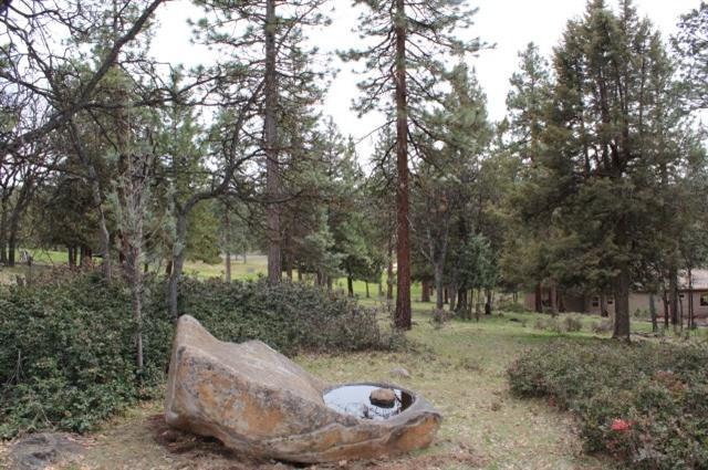 0-LOT 51 Thrush, Klamath Falls, OR 97601 (#2989247) :: Rocket Home Finder
