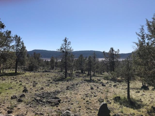 0 Coopers Hawk, Lot 799, Klamath Falls, OR 97601 (#2989314) :: Rocket Home Finder