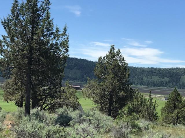 0 Pippit Ct, Lot 1173, Klamath Falls, OR 97601 (#2990092) :: Rocket Home Finder