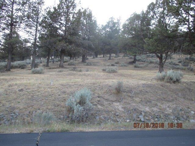 0-Lot 1187 Murrelet, Klamath Falls, OR 97601 (#2992682) :: Rocket Home Finder