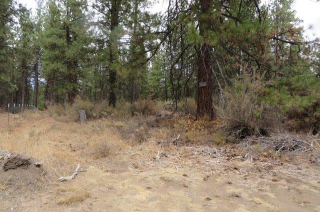 0 S. Chiloquin Road, Chiloquin, OR 97624 (#2994893) :: Rocket Home Finder