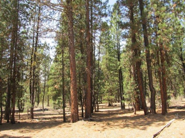 0 Green Forest, Chiloquin, OR 97624 (#2996120) :: FORD REAL ESTATE