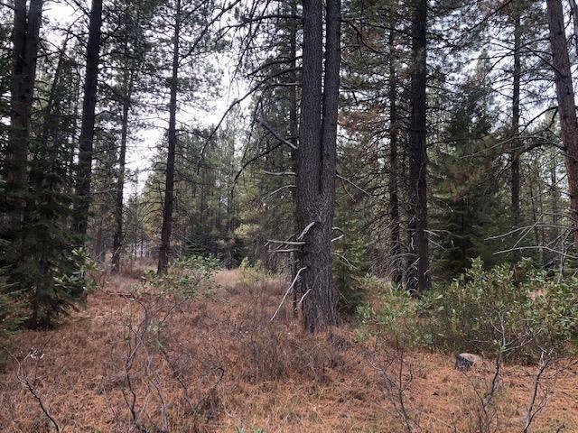 0 Clover, Klamath Falls, OR 97601 (#3000253) :: FORD REAL ESTATE