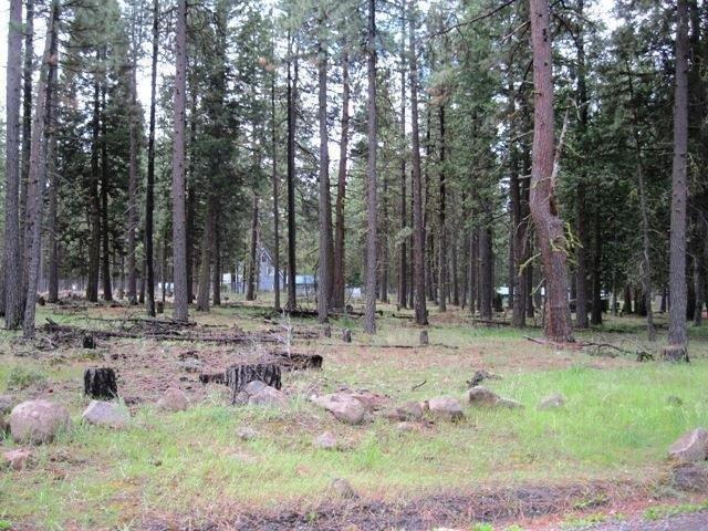 17006 Freight Road Ln, Keno, OR 97627 (#3000447) :: FORD REAL ESTATE