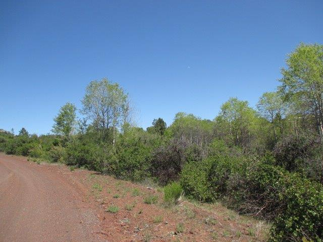 0 Sportsland, Chiloquin, OR 97624 (#3003369) :: FORD REAL ESTATE