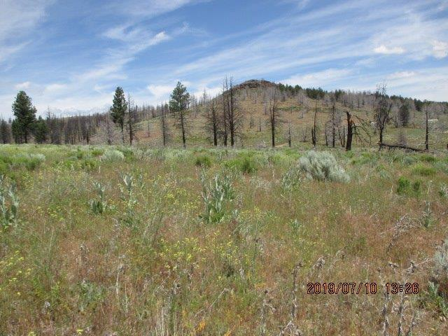 0-Lot 8 Mountain Trout, Sprague River, OR 97639 (#3004201) :: FORD REAL ESTATE