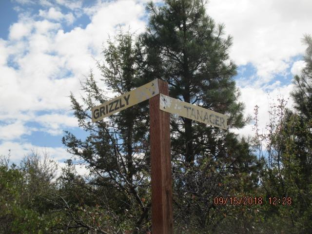 0-Lot 23 Tanager Dr, Bonanza, OR 97623 (#3005233) :: FORD REAL ESTATE