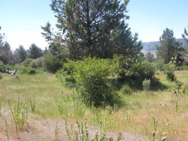 989 Crossbill, Klamath Falls, OR 97601 (#3008187) :: Team Zebrowski