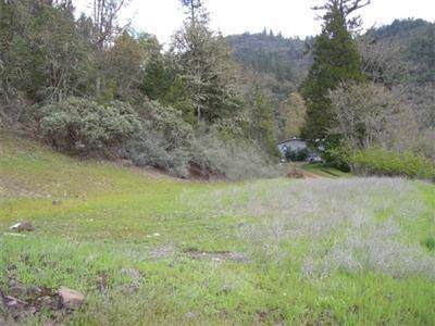 400-TL Train, Shady Cove, OR 97539 (#3009680) :: FORD REAL ESTATE