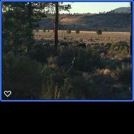 0 Tableland, Sprague River, OR 97639 (#3012233) :: Rutledge Property Group