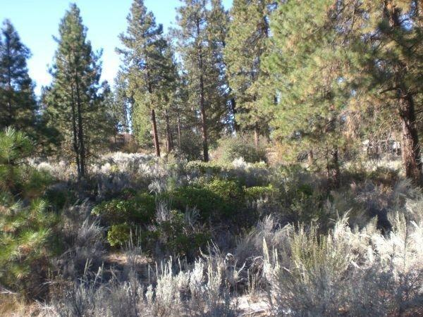 0-LOT 6 Legget, Chiloquin, OR 97624 (#K87341) :: FORD REAL ESTATE