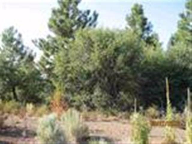 0 Treeland Lot 10, Chiloquin, OR 97624 (#2978092) :: FORD REAL ESTATE