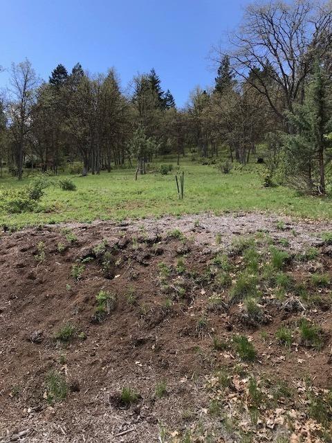 0 Coopers Hawk, Lot 853, Klamath Falls, OR 97601 (#2989791) :: Rocket Home Finder