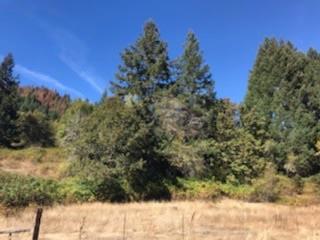 11247 Elk Creek, Trail, OR 97541 (#2994996) :: Rutledge Property Group