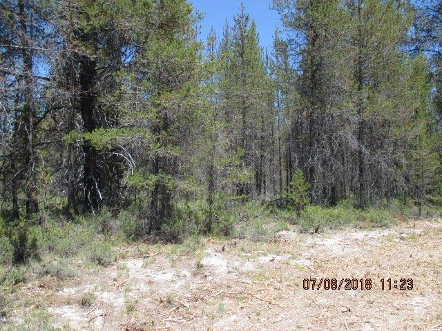 0-Lot 22 Priday Loop, Chiloquin, OR 97624 (#2970316) :: Rocket Home Finder