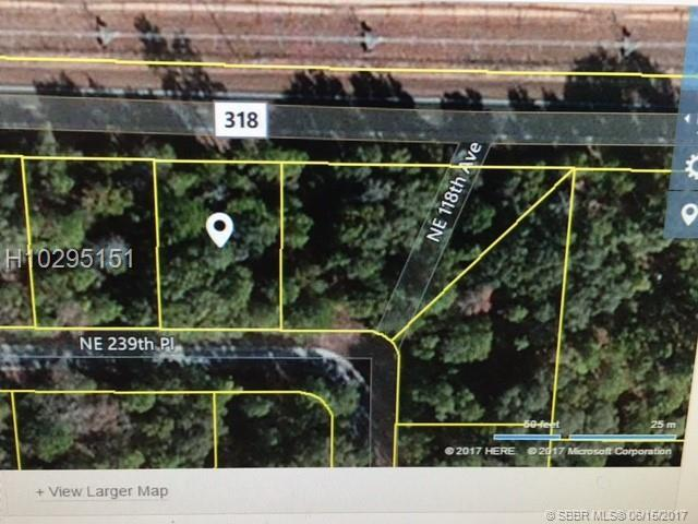 NE 118 239 Place, Other City - In The State Of Florida, FL 32134 (MLS #H10295151) :: Green Realty Properties