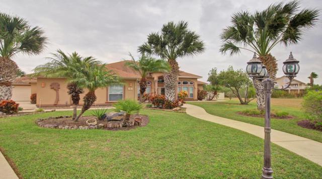 5 Cactus Wren, Laguna Vista, TX 78578 (MLS #89406) :: The Martinez Team