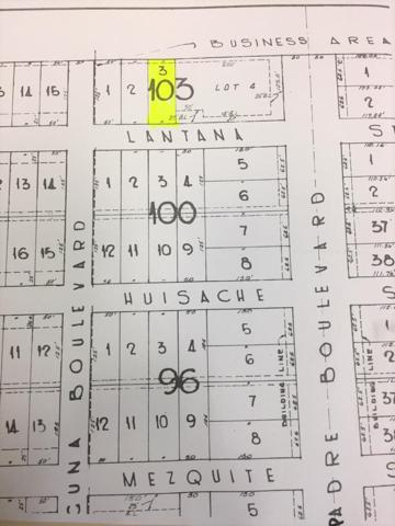 104 W Lantana St., South Padre Island, TX 78597 (MLS #91205) :: The MBTeam