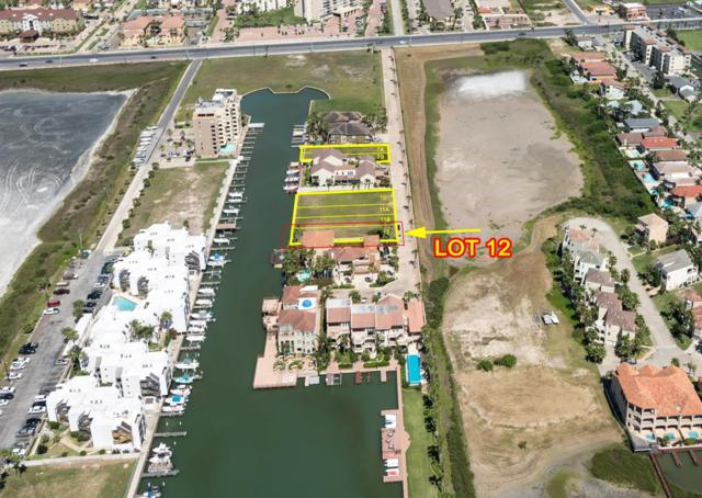 178 W Kings Court, South Padre Island, TX 78597 (MLS #91427) :: Realty Executives Rio Grande Valley