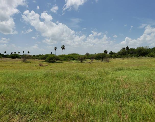 TBD Bayview Palms, Bayview, TX 78566 (MLS #91459) :: Realty Executives Rio Grande Valley