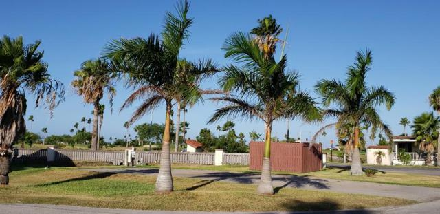 451 Cockle Dr., Port Isabel, TX 78578 (MLS #91541) :: The MBTeam