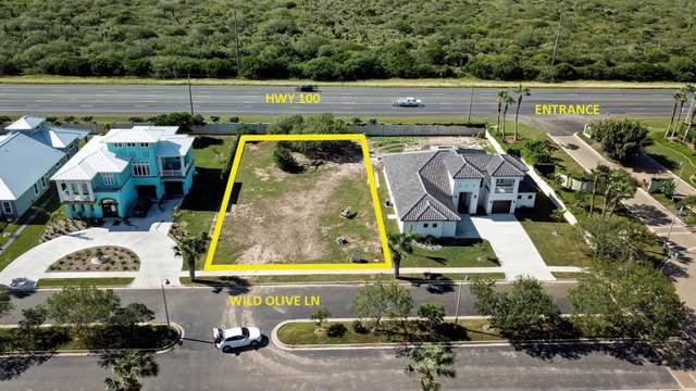 TBD Wild Olive Lane, Laguna Vista, TX 78578 (MLS #91826) :: Realty Executives Rio Grande Valley