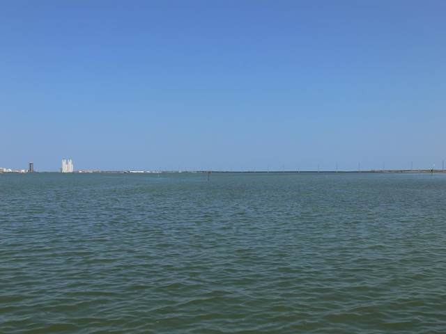 14 Queens Point, Port Isabel, TX 78578 (MLS #92248) :: Realty Executives Rio Grande Valley