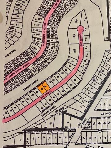 0 W Tarpon Ave, Port Isabel, TX 78578 (MLS #92441) :: The Monica Benavides Team at Keller Williams Realty LRGV