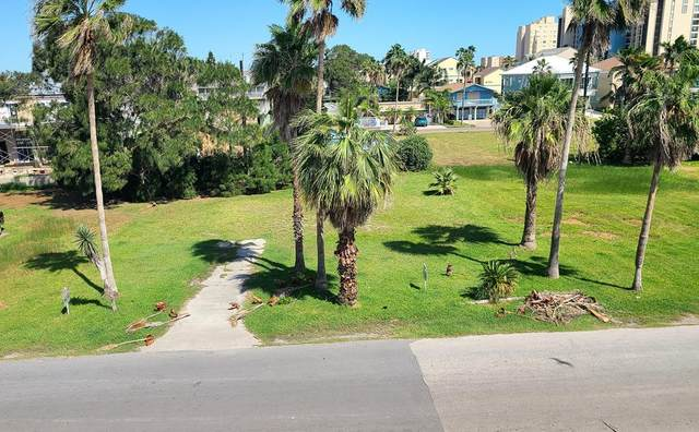 118 E Amberjack St., South Padre Island, TX 78597 (MLS #93094) :: The MBTeam
