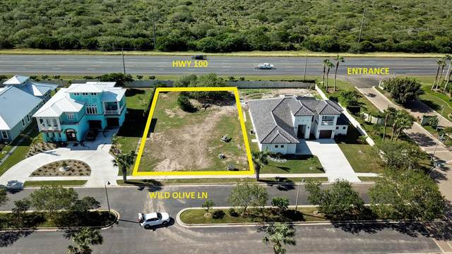 TBD Wild Olive Lane, Laguna Vista, TX 78578 (MLS #93220) :: The MBTeam