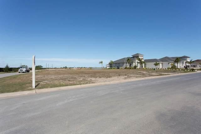 72 Whooping Crane Dr., Laguna Vista, TX 78578 (MLS #93236) :: The MBTeam