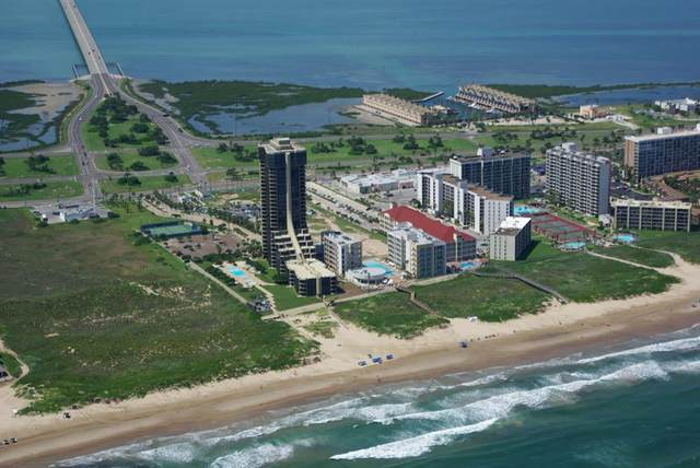 334 Padre Blvd. #901, South Padre Island, TX 78597 (MLS #93437) :: The MBTeam
