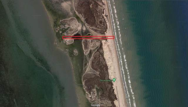 0 Highway 100, South Padre Island, TX 78597 (MLS #94021) :: The MBTeam