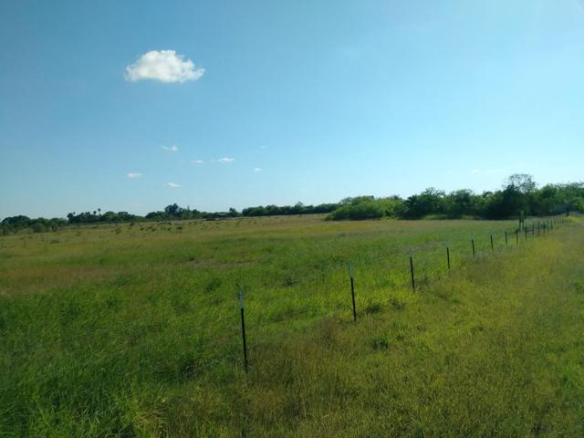 0 Perez, Bayview, TX  (MLS #89735) :: The Martinez Team