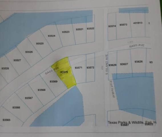 Lot 49 W Bass Avenue, Port Isabel, TX 78578 (MLS #94177) :: The MBTeam