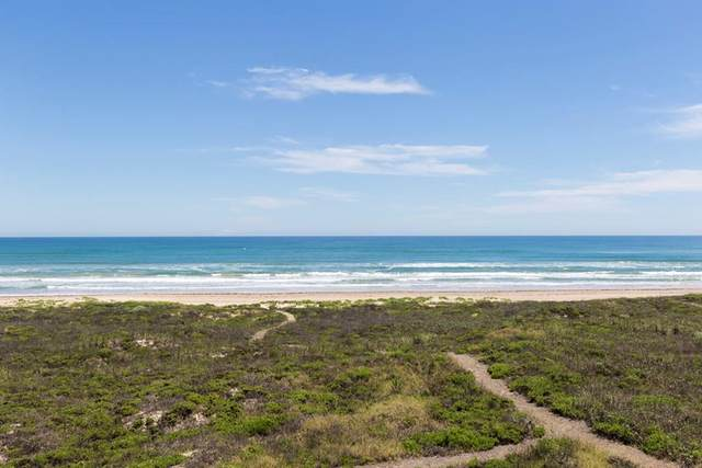 8224 Breakers Blvd., South Padre Island, TX 78597 (MLS #92460) :: The MBTeam