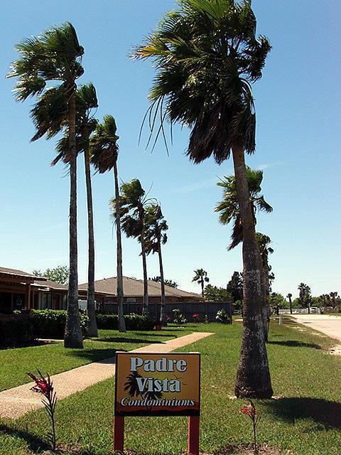1405 Palo Blanco Dr A, Laguna Vista, TX 78578 (MLS #89413) :: The Martinez Team