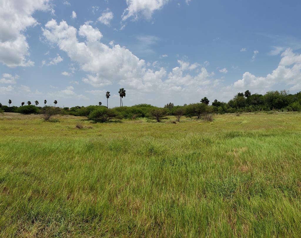 TBD Bayview Palms - Photo 1