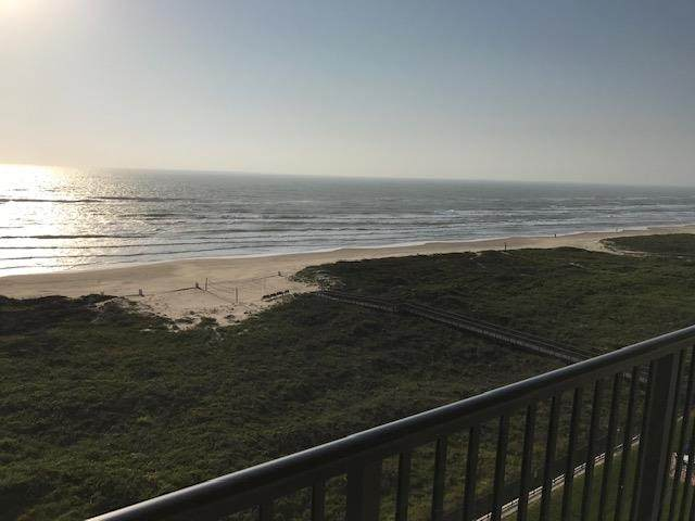 3000 Gulf Blvd. #801, South Padre Island, TX 78597 (MLS #92289) :: Realty Executives Rio Grande Valley