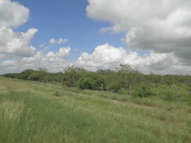 0 Highway 100, Los Fresnos, TX 78566 (MLS #93810) :: The MBTeam