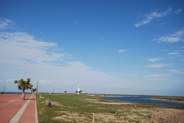 8401 Water St., South Padre Island, TX 78597 (MLS #86281) :: The MBTeam