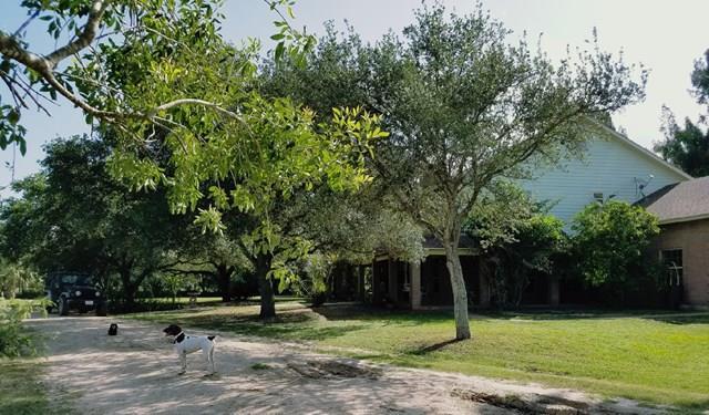 Bayview, TX 78566 :: The Martinez Team